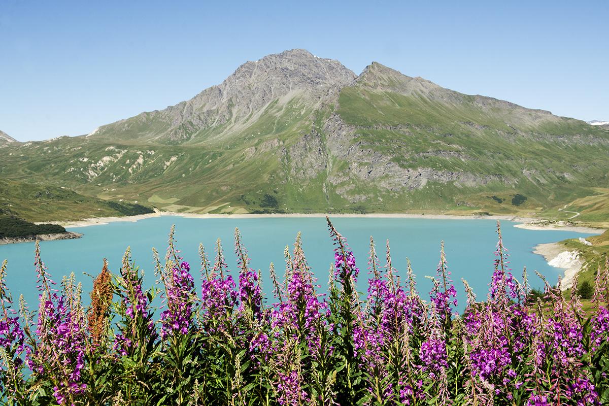 France2margothostphotographe