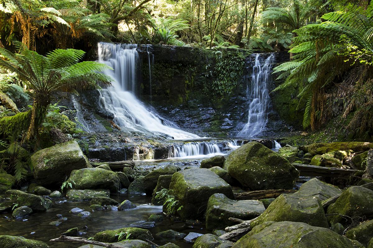 Tasmanie4margothostphotographe